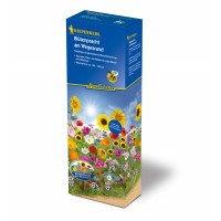 Blomsterblanding-groftekantens-blomster