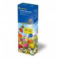 Blomsterblanding - Markblomster