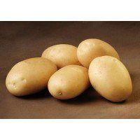 Sava - økologiske læggekartofler 2 kg.