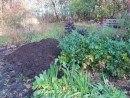 jordforbedring til leret jord