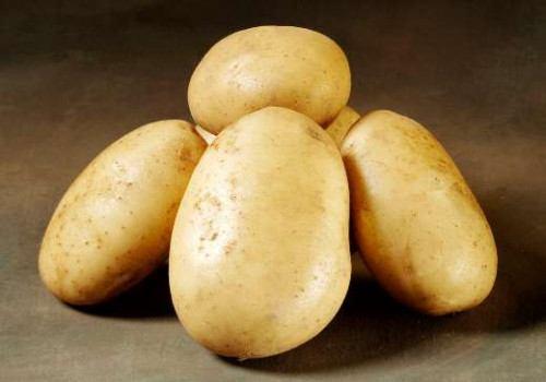 Folva - læggekartofler 2 kg.