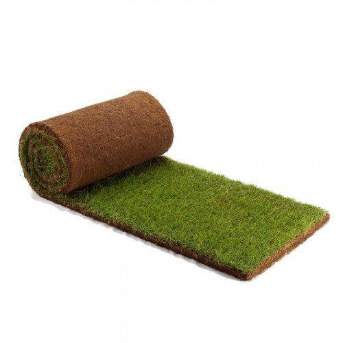 Rullegræs - pris per m2