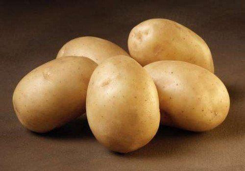 Solist - læggekartofler 2 kg.